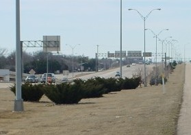 Kell Freeway Median in Winter